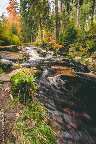 Papiers peints Rivière de la forêt Bachlauf Harz