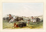 Old watercolor illustration of native indians hunting buffalos. By G. Catlin, publ. on Catlin's North American Indian Portfolio Ackerman, New York, 1845 - 179265324