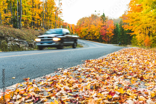 Foto Murales Pickup on countryside road with autumn colors and trees