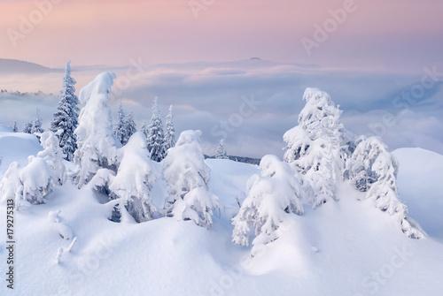 Fotobehang Purper Beautiful winter landscape in the mountains