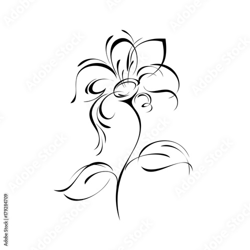 ornament 169. stylized flower in black lines on a white background