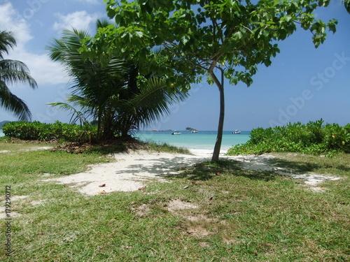 Fotobehang Tropical strand plage seychelle