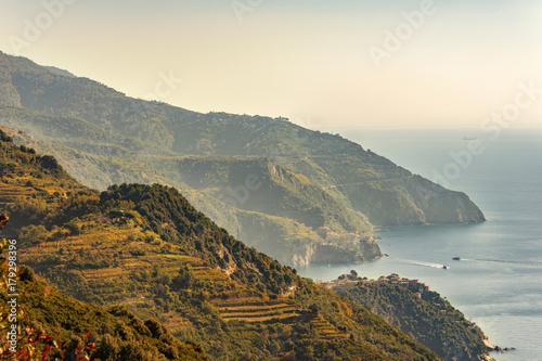 Fotobehang Wijngaard Weinberge der Cinque Terre