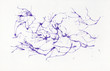 Abstract watercolor on paper. Background neurons violet