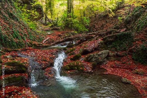 Fotobehang Bergrivier Mountain river 8