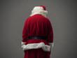 Santa Claus back view