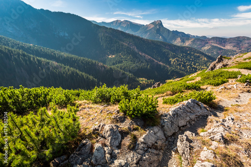 Plexiglas Groen blauw Colorful view in Tatra mountains from the ridge in autumn