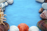 Summer sea background - shells on a blue background - 179392125