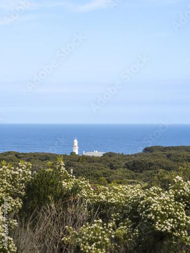 Fotobehang Vuurtoren LIGHTHOUSE AND COAST ON THE GREAT OCEAN ROAD - AUSTRALIA