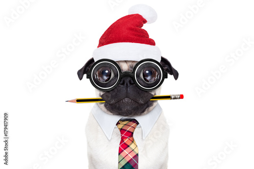 Fotobehang Crazy dog dog office worker on christmas holidays