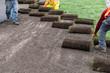 installation of sod