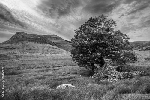 Foto op Plexiglas Donkergrijs Black and white Evening landscape image of Llyn y Dywarchen lake in Autumn in Snowdonia National Park