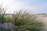 Nordsee, Strand auf Langenoog: Dünen, Meer, Entspannung, Ruhe, Erholung, Ferien, Urlaub, Glück, Freude,Meditation :) - 179515752