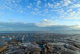 Morgensonne am Meer: Nordsee, Strand auf Langenoog, Ruhe, Dünen, Natur, Entspannung, Erholung, Ferien, Urlaub, Meditation :) - 179523173