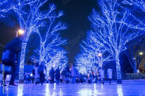 Winter illumination in Shibuya, Tokyo 青の洞窟