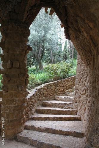 Foto op Plexiglas Weg in bos Escalier