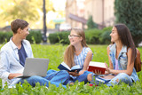 Young students studying outdoors