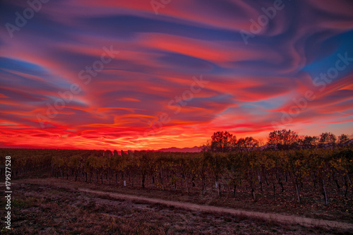 Papiers peints Grenat Lenticular clouds, technically known as altocumulus standing lenticularis, at sunset above vineyards in northern Italy