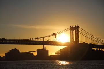 bird bridge sun