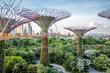 Quadro Jardins de Singapour