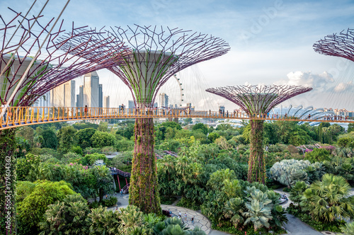 Poster Jardins de Singapour