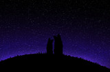 Silhouette of Two Dogs Sitting on the Meadow and Observing Starry Sky