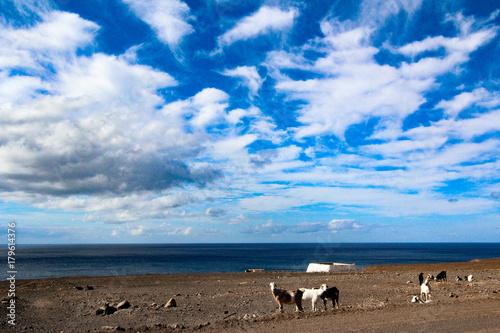 Deurstickers Canarische Eilanden Lanzarote Island