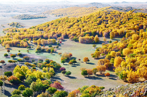 Fotobehang Oranje autumn landscapes of Bashang plateau/ autumn landscapes of meadows steppe
