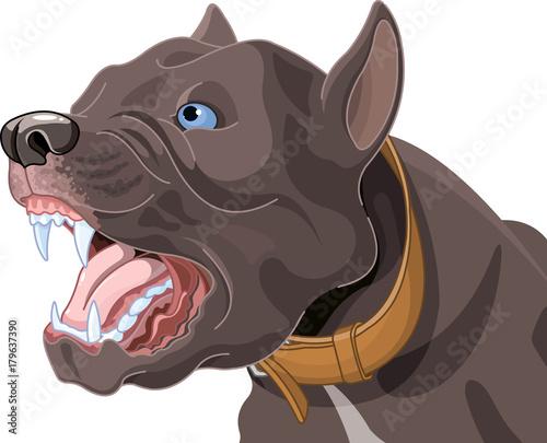 Papiers peints Magie Barking Dog