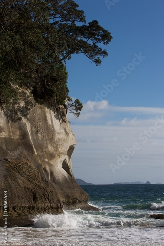 Foto Spatwand Cathedral Cove Coromendal Cathedral Cove New Zealand