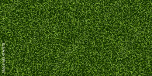 Foto op Plexiglas Groene Green grass background. Lawn nature. Abstract field texture. Ecology symbol. Vector Illustration