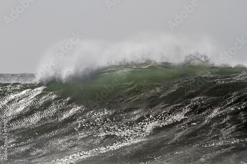 Big stormy wave