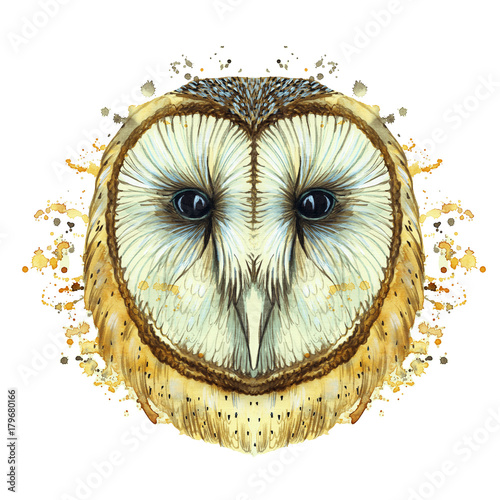 Foto op Plexiglas Uilen cartoon watercolor drawing of an animal predator bird owl, common owl, portrait of an owl, white owl, feathers, white background for decor and decoration, for embroidery