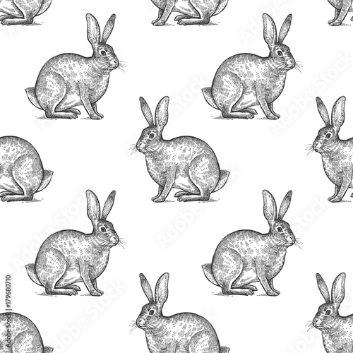 Seamless pattern with hare. - 179680710