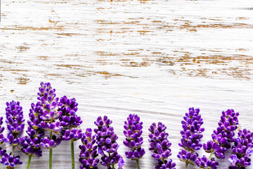 Lavender flowers frame on white wooden background, overhead