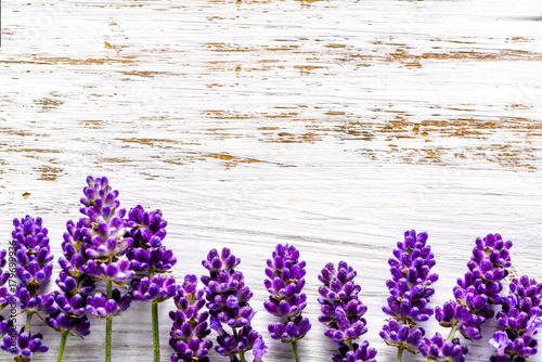 Fototapeta Lavender flowers frame on white wooden background, overhead