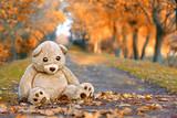 großer Teddybaär im Herbstpark - 179701190
