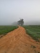 country dirt road in the mist