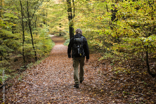 Foto op Plexiglas Weg in bos Mann wandert im Wald