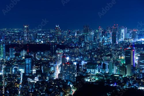 In de dag Tokio 東京の夜景
