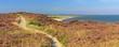Leinwanddruck Bild - Weg durch Braderuper Heide auf Sylt zur Zeit der Heideblüte