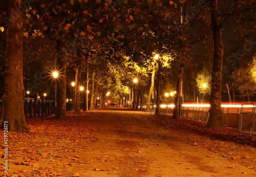 Foto op Plexiglas Bruin Aleja w Londynie jesienną nocą