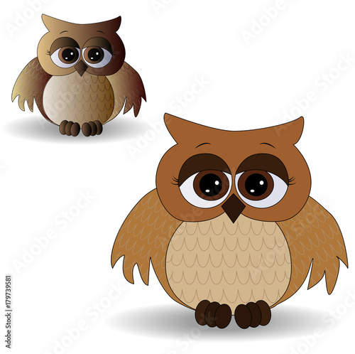 Aluminium Uilen cartoon Two sad owls with surprised eyes and splayed wings, with a pattern on the sternum and wings