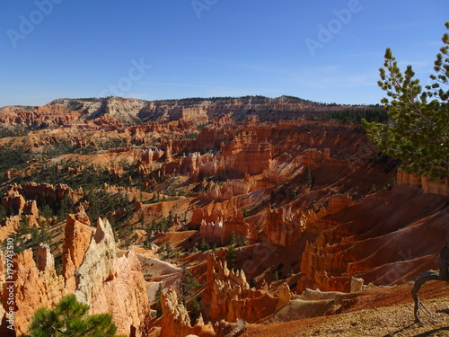 Foto op Canvas Rood paars View over Bryce Canyon, Utah, USA