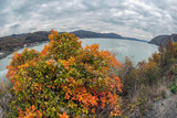 Fish eye view wiyh autumn at the Danube Gorges - 179757917