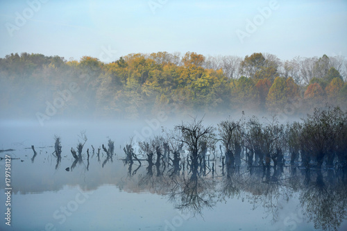 Early Morning Fog on Lake - 179758127