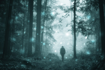 Man walks in magical dark turquoise colored foggy wild forest with abstract firefly bokeh lights. © robsonphoto