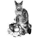 the cat with the money sketch vector graphics monochrome black-and-white drawing