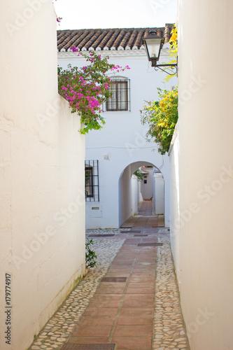 Poster Smal steegje Street. Beautiful Spanish street. Costa del Sol, Andalusia, Spain.