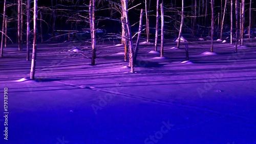 Staande foto Violet 美瑛の青い池